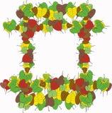 Листья Pipal Стоковые Фотографии RF