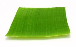 Лист банана на белизне Стоковое Изображение