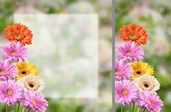 Лист бумаги witn открытки цветка пустой Стоковая Фотография