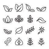Лист, вегетарианец, значок травы установили в тонкую линию стиль Стоковое фото RF