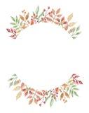 Лист венка рамки осени ягод падения акварели Стоковая Фотография