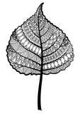 Лист дерева Zentangle черно-белые на белой предпосылке Стоковая Фотография