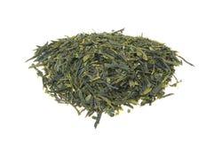 Лист зеленого чая Стоковые Изображения RF