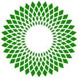 Лист, значок завода Круговой геометрический мотив с лепестками Стоковое Фото