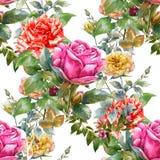 Лист и цветки картины акварели, подняли, безшовная картина на белой предпосылке Стоковое Изображение RF