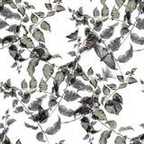 Лист иллюстрации акварели, бабочка, безшовная картина на белой предпосылке Стоковое фото RF
