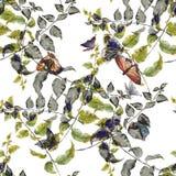 Лист иллюстрации акварели, бабочка, безшовная картина на белой предпосылке Стоковые Фото