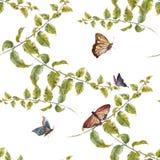 Лист иллюстрации акварели, бабочка, безшовная картина на белой предпосылке Стоковые Изображения RF
