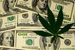 Лист конопли на куче 100 долларовых банкнот Стоковое Изображение