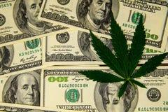Лист конопли на куче 100 долларовых банкнот Стоковая Фотография