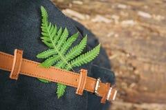 Лист листвы на рюкзаке anstrap Концепция образа жизни и приключения в каникулах самостоятельно во взгляде леса сверху стоковое изображение rf