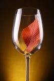 Лист осени в стекле Стоковое Изображение RF