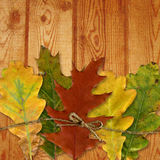 Лист осени и деревянная текстура Стоковая Фотография RF