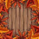 Лист осени на деревянном шаблоне Стоковое Фото