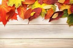 Лист осени на деревянной предпосылке Стоковая Фотография