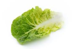 Лист свежего Lactuca sativa изолированные на белой предпосылке Стоковое Изображение