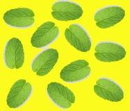 Лист свежей мяты изолированные на желтой предпосылке, взгляде сверху стоковое изображение rf