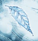 Лист сделанные выплеска воды Стоковые Фото