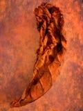 Лист табака Стоковое фото RF