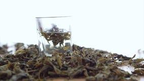 Лист чая растворяя в предпосылке белизны горячей воды видеоматериал