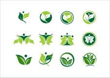 Лист, экологичность, завод, логотип, люди, здоровье, зеленый цвет, природа, символ, значок Стоковое Изображение RF