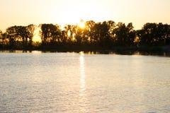Лист Bokeh с солнечным светом, теплым цветом тона стоковые фотографии rf