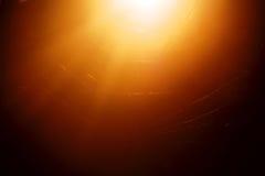 Лист Bokeh с солнечным светом Стоковая Фотография