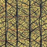 Лист veins безшовная картина текстуры Стоковое фото RF
