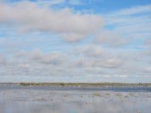 Литовский ландшафт весны Стоковая Фотография RF