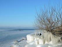 Литовский ландшафт зимы Стоковые Изображения RF