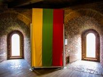 Литовский флаг в башне Gediminas Стоковые Фотографии RF