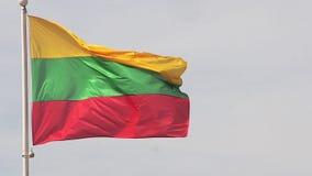 Литовский флаг развевая в ветре видеоматериал