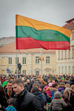 Литовский флаг Стоковые Изображения RF