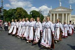 Литовское торжество песни стоковые изображения