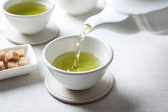 Лить зеленый чай в белую чашку фарфора стоковое фото