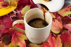 Лить свежий кофе во время времени падения Стоковая Фотография RF