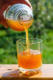 лить сока яблока свежий Стоковые Изображения