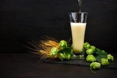 лить стекла пива Стекло пива с зелеными хмелями и ушами пшеницы на темном деревянном столе стоковые изображения rf