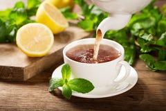 Лить чай в чашку стоковая фотография rf