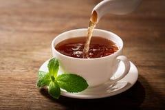 Лить чай в чашку стоковые изображения rf