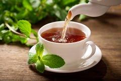 Лить чай в чашку стоковые фото