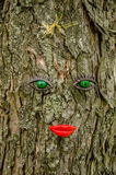 Лицевые характеристики на дереве стоковое изображение rf