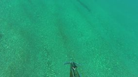 Личная перспектива spearfisher снимает подводное с оружием копья сток-видео