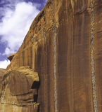 Лишайник, каньон Escalante, Юта Стоковые Изображения RF