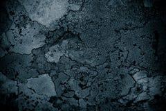 Лишайник на фоне конспекта предпосылки конспекта утеса лишайника и каменной/грубой предпосылки текстуры Стоковое Изображение RF