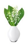 Лилии белых цветков долины в белой изолированной вазе Стоковое Фото