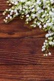 Лилии белых цветков долины разбросали на старую деревянную предпосылку Стоковые Фото