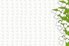 Лилии долины на белой предпосылке Стоковые Изображения RF