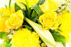 Лилии 10 роз Стоковые Фото