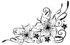 Лилии, цветки Стоковые Фотографии RF